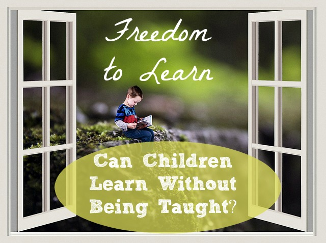 Freedom to Learn Can Children Learn Without Being Taught