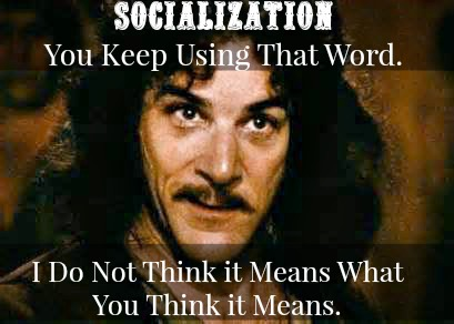 Socialization (Homeschooling & Peers) I Do Not Think it Means What You Think it Means